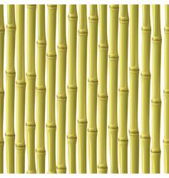 abstract bamboo background vector image vector image