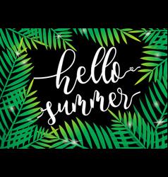 Hello summer beach palm with dark background vector