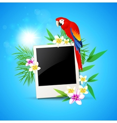 blue background with red parrot and photo vector image vector image