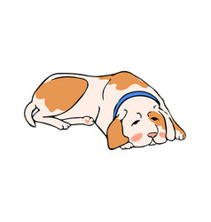 dog lies waiting for owner vector image