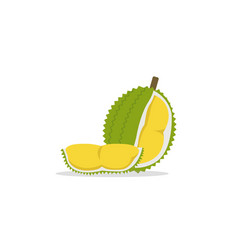 flat durian and cut piece with isolated white vector image