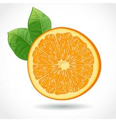 Fresh juicy piece of orange isolated on white vector