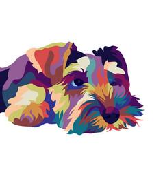 miniature schnauzer pop art style vector image