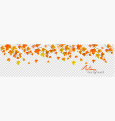 nature autumn panorama with colorful leaves and vector image