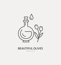 olive oil line icon vector image