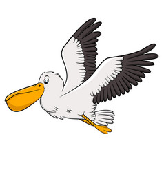 pelican cartoon drawing vector image