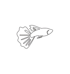 Single continuous line drawing beauty guppy vector