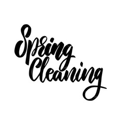 spring cleaning lettering phrase for invitation vector image