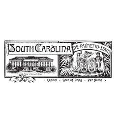 The state banner of south carolina the palmetto vector