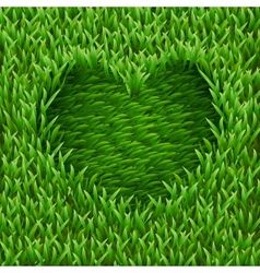 Heart on green grass vector image