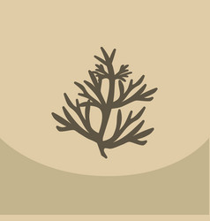 dill on color background vector image