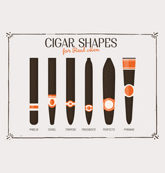 different cigar shapes vector image