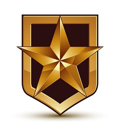 3d heraldic template with pentagonal golden star vector