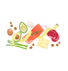 atkins low carb diet food vector image