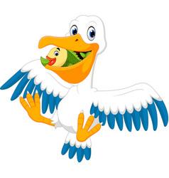 Cute pelican cartoon vector
