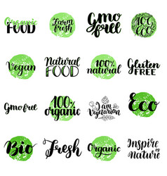 eco bio organic gluten free natural food vector image