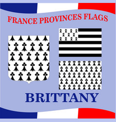 Flag of french province brittany vector