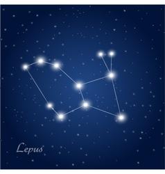 Lepus vector