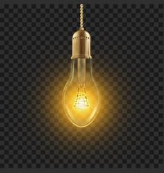 Light bulb glowing shine lamp bulb vector