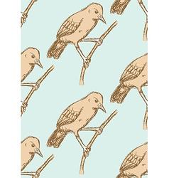 Sketch rufous hornero bird in vintage style vector image