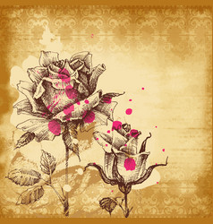 vintage roses background for invitations vector image