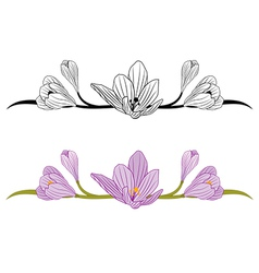 crocus set vector image