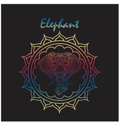 elephant head of elephant circle frame imag vector image
