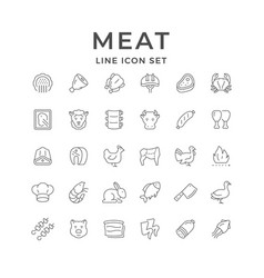 Set line icons meat vector