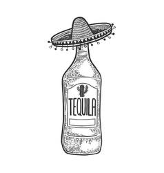 tequila mexican sombrero sketch engraving vector image