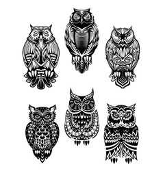 Tribal owl birds set vector
