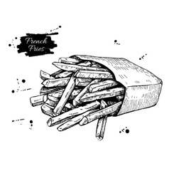 Vintage french fries drawing hand drawn vector