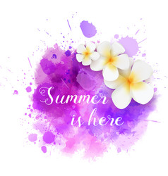 summer watercolored splash with flowers vector image vector image