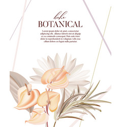 bohemian plant pampas dried palm orchid calla vector image