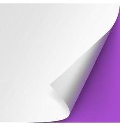 Curled corner of White paper on Purple Background vector