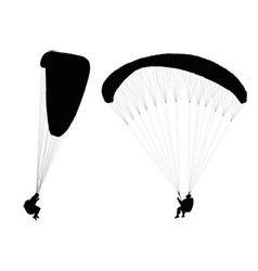 flying paragliders vector image