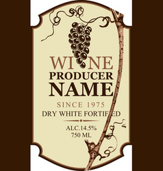 label for wine with the grape vine and grape bunch vector image