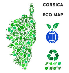 Leaf green composition corsica france vector