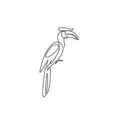 One single line drawing adorable hornbill vector
