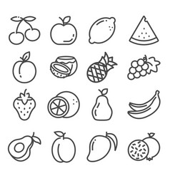 set outline fruit icons isolated vector image
