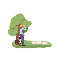 Shepherd and his herding dog grazing sheep flock vector