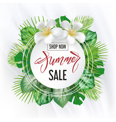 summer sale banner with tropic leaves vector image