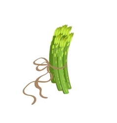 Asparagus Product Rich In Folic Acid vector image