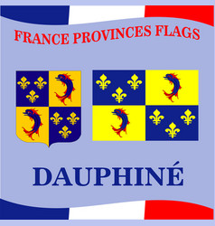 Flag of french province dauphine vector