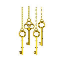 Gold old keys hanging icon vector