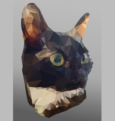low poly portrait black and white kitten poly vector image
