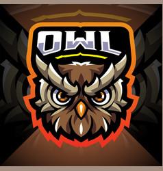 Owl head esport mascot logo vector