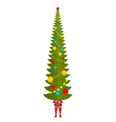 santa carry big christmas tree claus and huge vector image