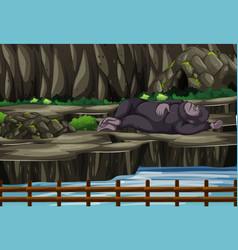 Scene with gorilla in zoo vector