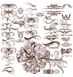 Set of calligraphic flourishes and ornaments vector