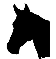 Silhouette of horse vector